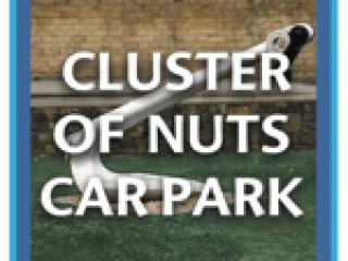 Menu link to Cluster of Nuts