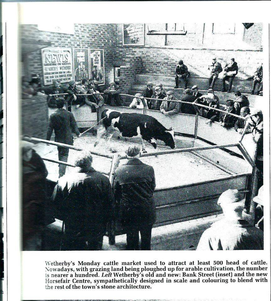 Wetherby Cattle Market circa 1969